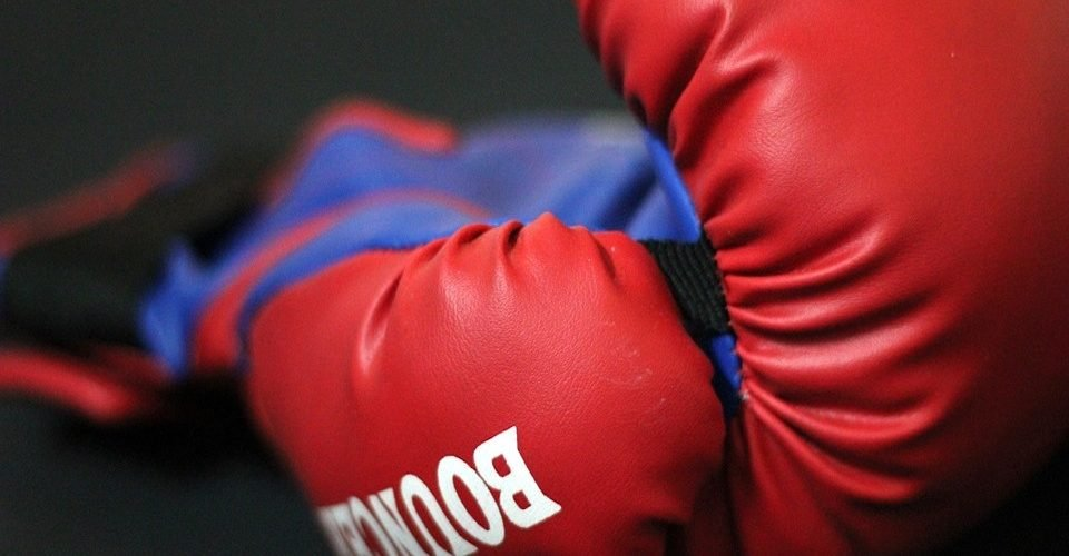 Best 16 Oz Boxing Gloves