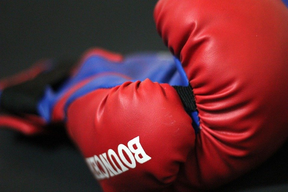 Best 16 Oz boxing gloves buyers guide