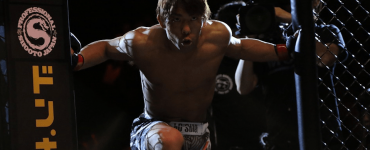 The history of mixed martial arts (MMA) featured image